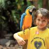 SÃO PAULO, BRASIL - El tema de la sostenibilidad es tratado de forma especial en las unidades educativas de la LBV. Desde temprano el niño aprende la importancia de preservar la Naturaleza, la vida y la relación de equilibrio con el Medio Ambiente, mediante acciones y proyectos educativos.