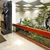 Con instalaciones amplias, el Salón Noble del TBV es un espacio acogedor para recibir a los visitantes de todo el mundo. En él se encuentran expuestos objetos donados al Templo de la Buena Voluntad por representantes de las más diversas nacionalidades.