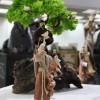 Ekspozicio de verkoj omaĝe al Sankta Francisko el Asizo.