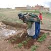 BUENA VOLUNTAD EN ACCIÓN (Bolivia) —El programa ayuda a habitantes de lugares pobres a desarrollar huertas comunitarias, contribuyendo a la generación de recursos, además de atender la demanda local de verduras y legumbres.